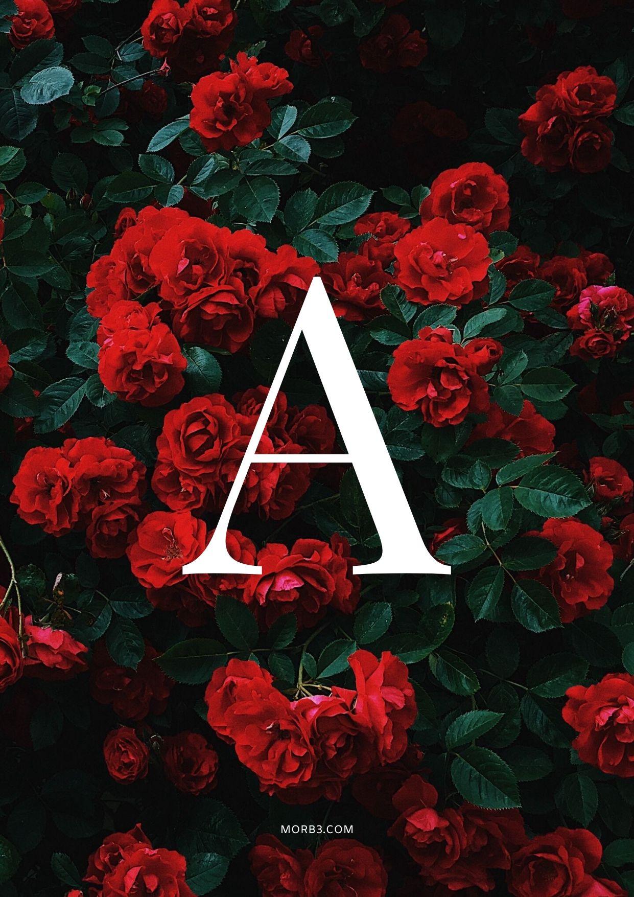صور و خلفيات حرف A مميزة