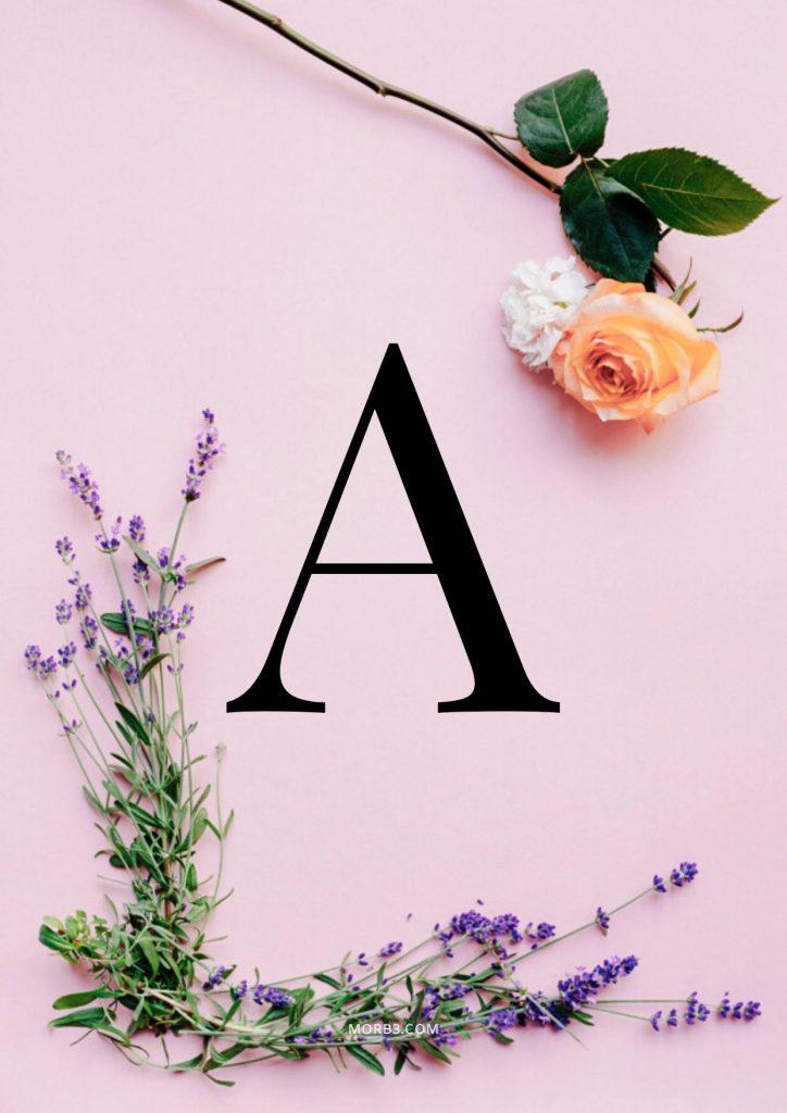 صور حرف A خلفيات حرف A خلفيات حرف A رومانسية اجمل حرف A في العالم