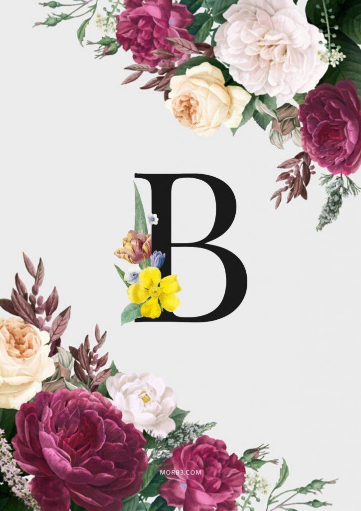 صور حرف B مع كل الاحرف صور 2