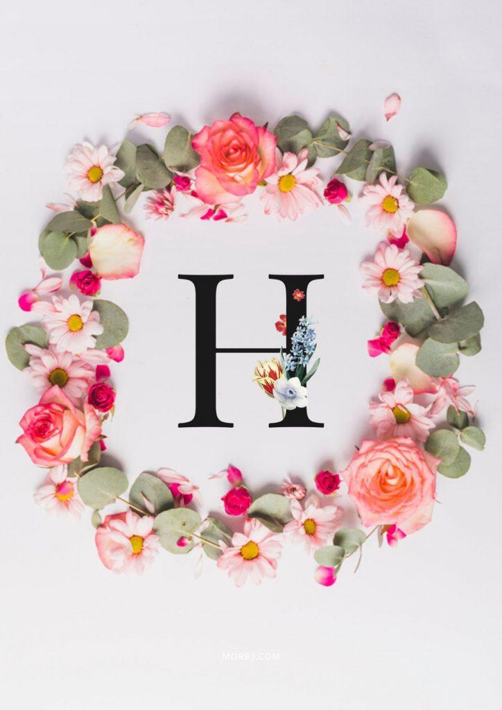 صور حرف H خلفيات حرف H خلفيات حرف H رومانسية اجمل حرف H في العالم