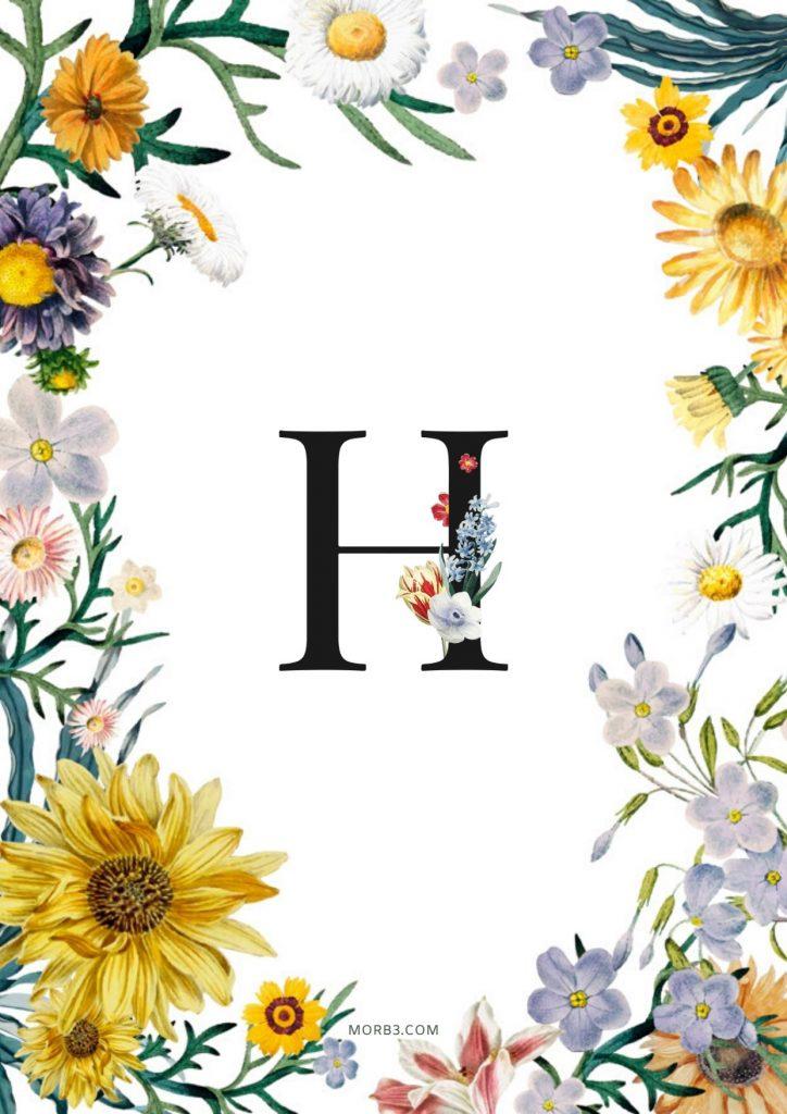 صور حرف H خلفيات حرف H خلفيات حرف H رومانسية اجمل حرف H في العالم حرف H بالورد حرف H احبك حرف H في قلوب حرف H مع كلام حب خلفيات حرف H متحركة خلفيات حرف H للايفون للموبايل للهاتف للجوال للفيس للواتس صور مكتوب عليها حرف H صور حرف H انجليزي خلفيات مكتوب عليها حرف H رمزيات حرف H حرفh صور عن حرف h حرف h مزخرف صور حرفh صور h حرف h بالورد حرف h احبك صورحرف h حرف h متحرك حرف h مزخرف كتابه حرف h عاشقانه صور حرف h جميلة خلفيات حرف h جميلة اجمل صور حرف h صور جميلة لحرف h حروف بالانجليزي حروف إنجليزية حروف مزخرفه حروف انجليزي حرف بالانجليزي اجمل الصور عن حرف h حروف مزخرفه حروف انجليزي مزخرفه زخرفة حروف صوري حرف h اجمل الصور حروف اجمل حرف h حرفh مزخرف خلفيات ايفون حرف h h letter h alphabet H images pictures wallpapers hd for mobile iphone 2020
