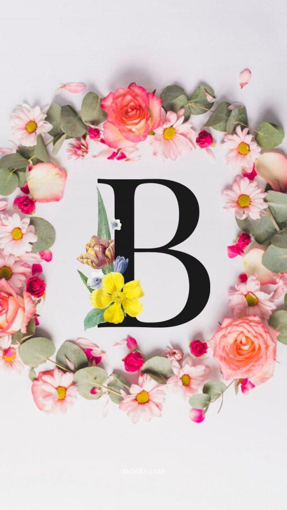 صور حرف B خلفيات حرف B خلفيات حرف B رومانسية اجمل حرف B في العالم حرف