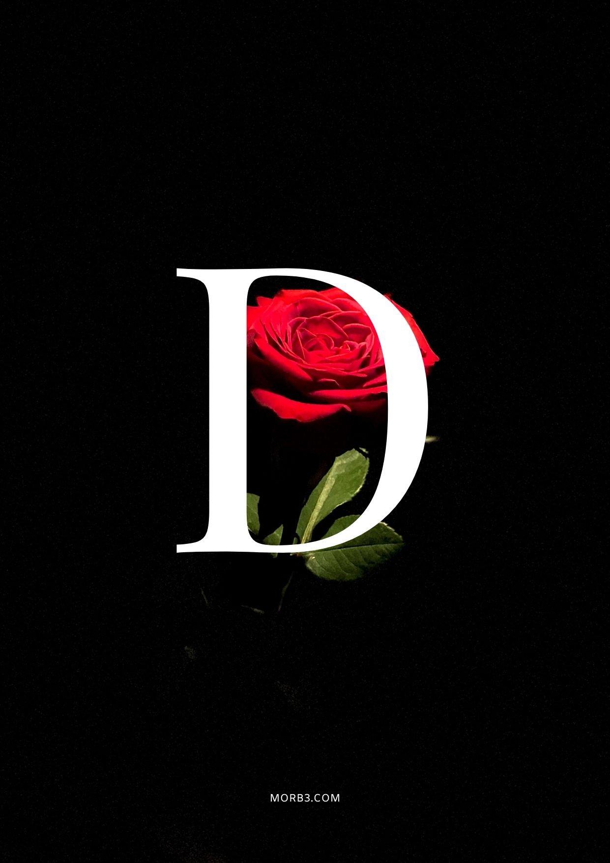 صور حرف D خلفيات حرف D خلفيات حرف D رومانسية اجمل حرف D في العالم حرف D بالورد حرف D احبك حرف D في قلوب حرف D مع كلام حب خلفيات حرف