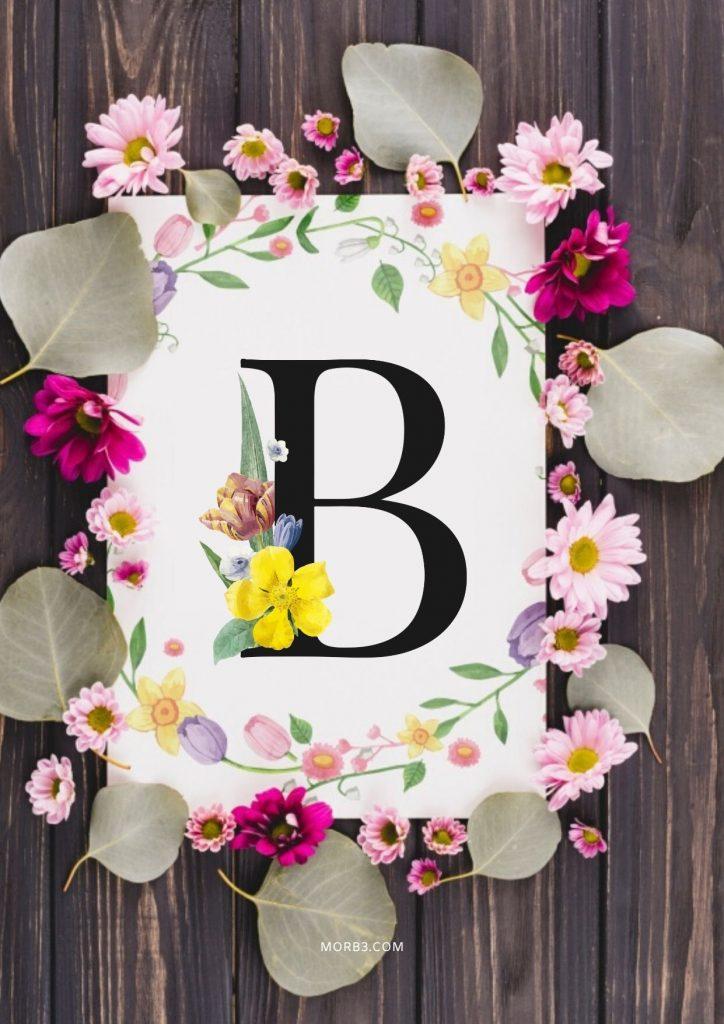 صور حرف B خلفيات حرف B خلفيات حرف B رومانسية اجمل حرف B في العالم
