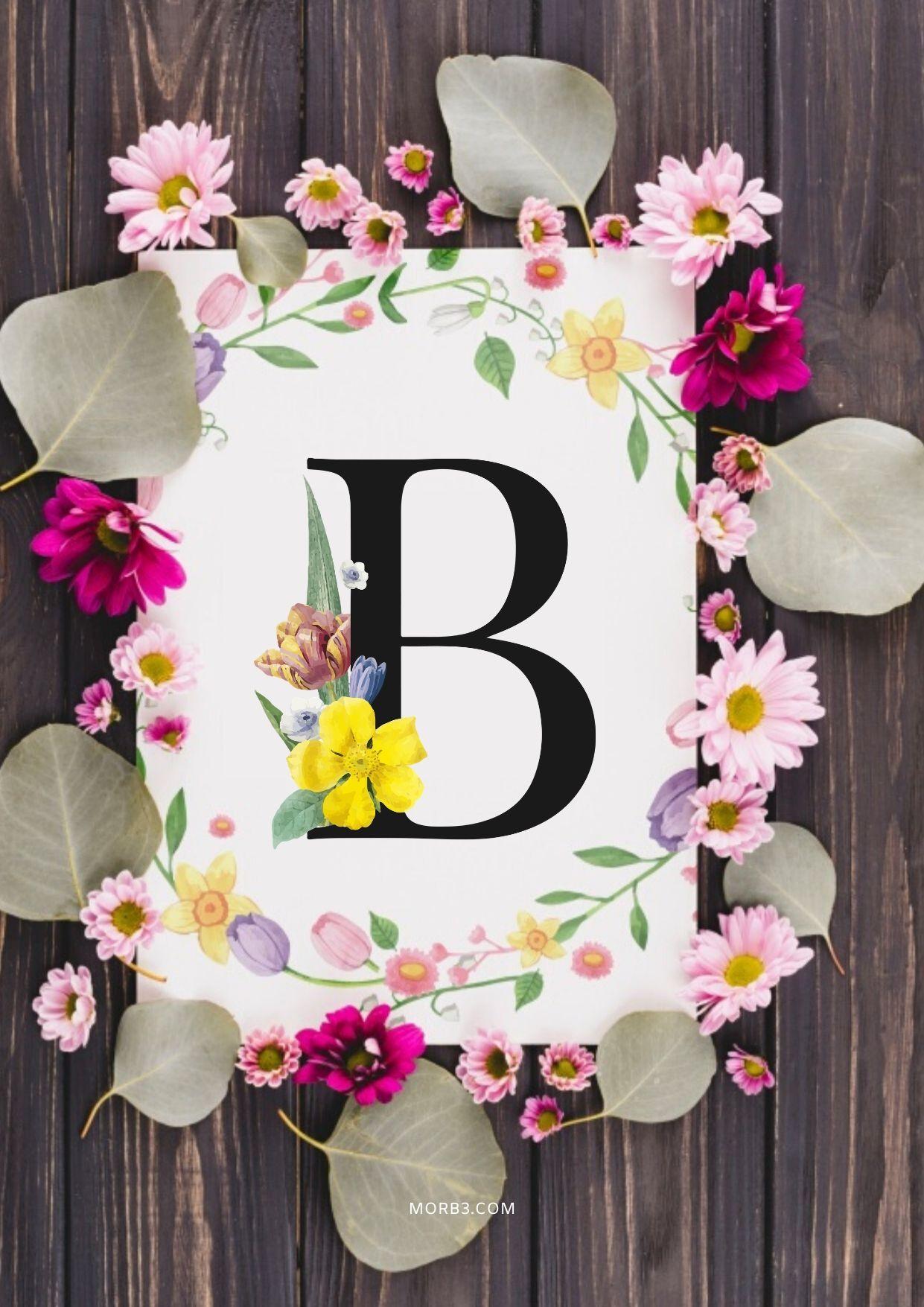 صور حرف B بجودة عالية باللغة 9