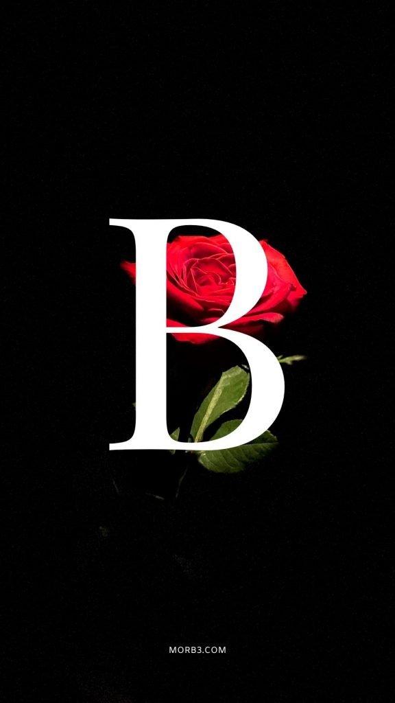 صور حرف B خلفيات حرف B خلفيات حرف B رومانسية اجمل حرف B في العالم حرف B بالورد حرف B احبك حرف B في قلوب حرف B مع كلام حب خلفيات حرف B متحركة خلفيات حرف B للايفون للموبايل للهاتف للجوال للفيس للواتس صور مكتوب عليها حرف B صور حرف B انجليزي خلفيات مكتوب عليها حرف B رمزيات حرف B حرفb صور عن حرف b حرف b مزخرف صور حرفb صور b حرف b بالورد حرف b احبك صورحرف b حرف b متحرك حرف b مزخرف كتابه حرف b عاشقانه صور حرف b جميلة خلفيات حرف b جميلة اجمل صور حرف b صور جميلة لحرف b حروف بالانجليزي حروف إنجليزية حروف مزخرفه حروف انجليزي حرف بالانجليزي اجمل الصور عن حرف b حروف مزخرفه حروف انجليزي مزخرفه زخرفة حروف صوري حرف b اجمل الصور حروف اجمل حرف b حرفb مزخرف خلفيات ايفون حرف b b letter b alphabet B images pictures wallpapers hd for mobile iphone 2020