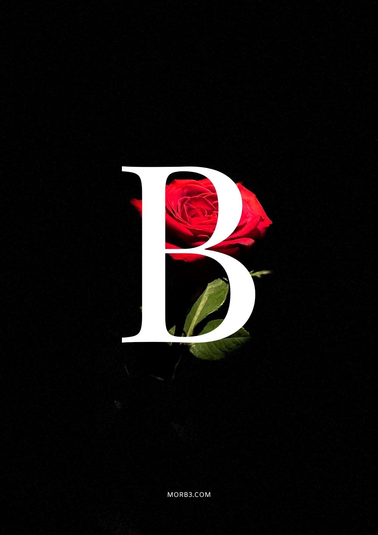 حرف B متحرك