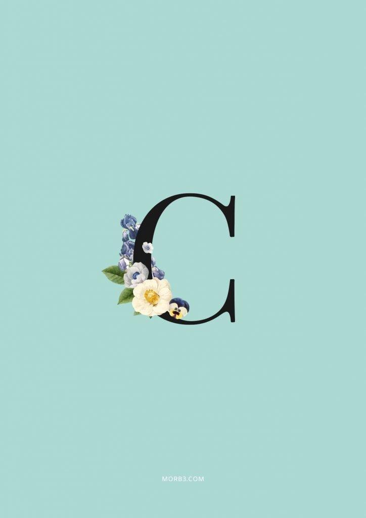 صور حرف C خلفيات حرف C خلفيات حرف C رومانسية اجمل حرف C في العالم حرف C بالورد حرف C احبك حرف C في قلوب حرف C مع كلام حب خلفيات حرف C متحركة خلفيات حرف C للايفون للموبايل للهاتف للجوال للفيس للواتس صور مكتوب عليها حرف C صور حرف C انجليزي خلفيات مكتوب عليها حرف C رمزيات حرف C حرفc صور عن حرف c حرف c مزخرف صور حرفc صور c حرف c بالورد حرف c احبك صورحرف c حرف c متحرك حرف c مزخرف كتابه حرف c عاشقانه صور حرف c جميلة خلفيات حرف c جميلة اجمل صور حرف c صور جميلة لحرف c حروف بالانجليزي حروف إنجليزية حروف مزخرفه حروف انجليزي حرف بالانجليزي اجمل الصور عن حرف c حروف مزخرفه حروف انجليزي مزخرفه زخرفة حروف صوري حرف c اجمل الصور حروف اجمل حرف c حرفc مزخرف خلفيات ايفون حرف c c letter c alphabet c images pictures wallpapers hd for mobile iphone 2020