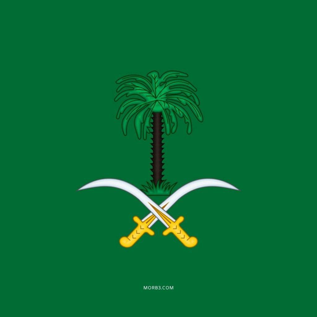 Saudi Arabia شعار السعودية سيفين ونخلة ذهبي