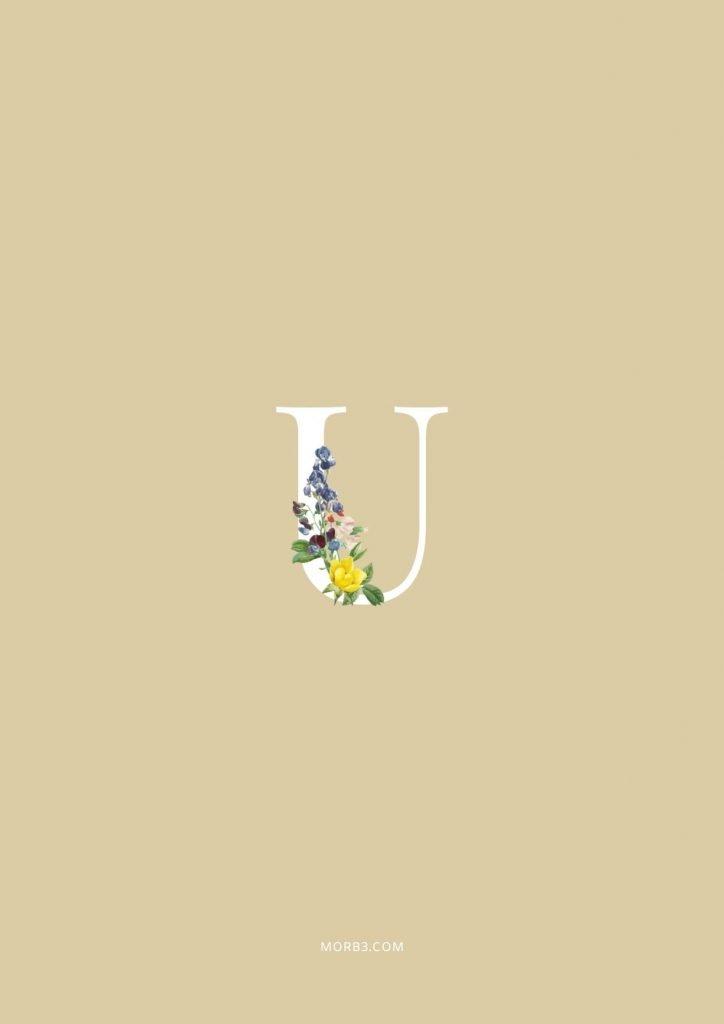 صور حرف U خلفيات حرف U خلفيات حرف U رومانسية اجمل حرف U في العالم حرف U بالورد حرف U احبك حرف U في قلوب حرف U مع كلام حب خلفيات حرف U متحركة خلفيات حرف U للايفون للموبايل للهاتف للجوال للفيس للواتس صور مكتوب عليها حرف U صور حرف U انجليزي خلفيات مكتوب عليها حرف U رمزيات حرف U حرفu صور عن حرف u حرف u مزخرف صور حرفu صور u حرف u بالورد حرف u احبك صورحرف u حرف u متحرك حرف u مزخرف كتابه حرف u عاشقانه صور حرف u جميلة خلفيات حرف u جميلة اجمل صور حرف u صور جميلة لحرف u حروف بالانجليزي حروف إنجليزية حروف مزخرفه حروف انجليزي حرف بالانجليزي اجمل الصور عن حرف u حروف مزخرفه حروف انجليزي مزخرفه زخرفة حروف صوري حرف u اجمل الصور حروف اجمل حرف u حرفu مزخرف خلفيات ايفون حرف u u letter u alphabet U images pictures wallpapers hd for mobile iphone 2020