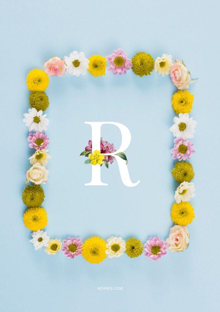 صور حرف R خلفيات حرف R خلفيات حرف R رومانسية اجمل حرف R في العالم حرف R بالورد حرف R احبك حرف R في قلوب حرف R مع كلام حب خلفيات حرف R متحركة خلفيات حرف R للايفون للموبايل للهاتف للجوال للفيس للواتس صور مكتوب عليها حرف R صور حرف R انجليزي خلفيات مكتوب عليها حرف R رمزيات حرف R حرفr صور عن حرف r حرف r مزخرف صور حرفr صور r حرف r بالورد حرف r احبك صورحرف r حرف r متحرك حرف r مزخرف كتابه حرف r عاشقانه صور حرف r جميلة خلفيات حرف r جميلة اجمل صور حرف r صور جميلة لحرف r حروف بالانجليزي حروف إنجليزية حروف مزخرفه حروف انجليزي حرف بالانجليزي اجمل الصور عن حرف r حروف مزخرفه حروف انجليزي مزخرفه زخرفة حروف صوري حرف r اجمل الصور حروف اجمل حرف r حرفr مزخرف خلفيات ايفون حرف r r letter r alphabet R images pictures wallpapers hd for mobile iphone 2020