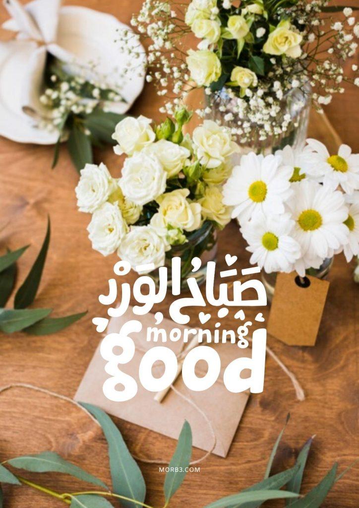 صور صباح الخير صور صباحية حلوة صور صباح خير صور مكتوب عليها صباح الخير صورعن صباح الخير صور خلفيات صباح الخير رومانسية صور صباح الخير رومانسيه جديدة وجميلة أحلي صباح صور صباح