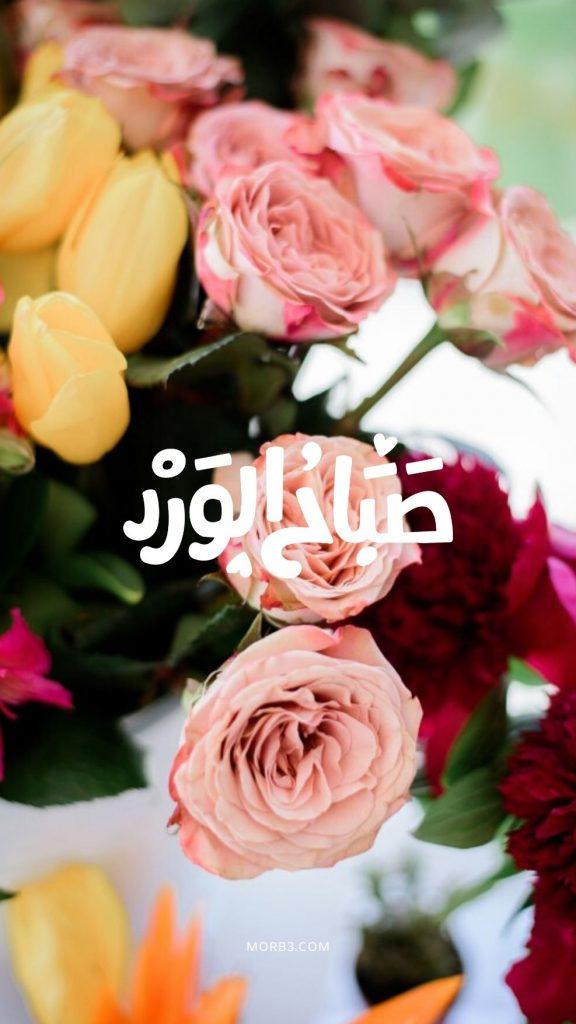 صور صباح الخير صور صباحية حلوة صور صباح خير صور مكتوب عليها صباح الخير صورعن صباح الخير صور خلفيات صباح الخير رومانسية صور صباح الخير رومانسيه جديدة وجميلة أحلي صباح صور صباح المحبه صور خلفيات صباح الورد صور صباح النور صور صباح الخيرات صور رومانسية صباحية أجمل صور صباح الخير عبارات صباح الخير للحبيب بالصور اجمل الصور المتحركة صباح الخير ادعية صباح الخير بالصور صور صباح الخير جديدة صور عن صباح الخير بطاقات صباح الخير روعه صورصباح الخير رومانسية صور صباحية رومانسية ص صباح الخير صباح الخير بالصور صور صباحيه صورصباح رسائل صباحية اذكار وادعية الصباح رسائل وادعية صباحية صور عن اصبح خلفيات صباح الخير للايفون للموبايل للهاتف للجوال للفيس للواتس خلفيات صباح الخير حبيبي واتس اب فيسبوك صور عند الصباح صبا ح الخير رسائل صباحيه مسجات صباحية رسائل صباحية للحبيبة دعاءصباح الخير صباح الخير مع دعاء صباح الخير متحركه صور دعاء الصباح بطاقات صباح الخير بطاقة صباح الخير جديده صور صباح لخير صور صباح الخير حبيبي صور صباح الخير للحبيب للحبيبة صور صباح الفل صور صباح جميل صور صباح جميله صور صباح العسل صور صباح السعاده اجمل صور صباح صور صباح الحب صباح السعادة والحب صور الصباح الدعاء الصباح صباح المحبه صباح الورود صباح الخير النور بالانجليزي صور صباح النور صباح خير حبيبي صباحك ورد صباح الخير بالانقلش صباح الخير انجليزي صباح الحب حبيبي صور صباح الحب والشوق صباحك حب صباح بالانجليزي احلى واجمل صباح الخير عبارات صباح الحب كلمة صباح الخير بالانجليزي أجمل عبارات صباح الخير صباح الشوق صباح الخير حبيبتى صباح الخير حبيبى صور صباح الخير تويتر صباح الخير للاصدقاء بالصور صور صباح الورد رمزيات صباح الورد والفل والياسمين خلفيات صباح الخير روعه صور صباح الخير فيسبوك خلفيات صباحيه خلفيات صباحيه حب good morning images pictures wallpapers hd for mobile iphone whatsapp facebook 2020