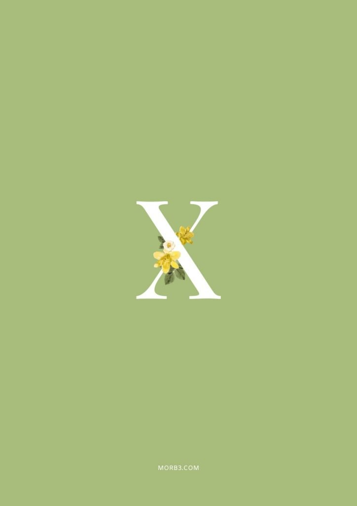 صور حرف X خلفيات حرف X خلفيات حرف X رومانسية اجمل حرف X في العالم حرف X بالورد حرف X احبك حرف X في قلوب حرف X مع كلام حب خلفيات حرف X متحركة خلفيات حرف X للايفون للموبايل للهاتف للجوال للفيس للواتس صور مكتوب عليها حرف X صور حرف X انجليزي خلفيات مكتوب عليها حرف X رمزيات حرف X حرفx صور عن حرف x حرف x مزخرف صور حرفx صور x حرف x بالورد حرف x احبك صورحرف x حرف x متحرك حرف x مزخرف كتابه حرف x عاشقانه صور حرف x جميلة خلفيات حرف x جميلة اجمل صور حرف x صور جميلة لحرف x حروف بالانجليزي حروف إنجليزية حروف مزخرفه حروف انجليزي حرف بالانجليزي اجمل الصور عن حرف x حروف مزخرفه حروف انجليزي مزخرفه زخرفة حروف صوري حرف x اجمل الصور حروف اجمل حرف x حرفx مزخرف خلفيات ايفون حرف x x letter x alphabet X images pictures wallpapers hd for mobile iphone 2020