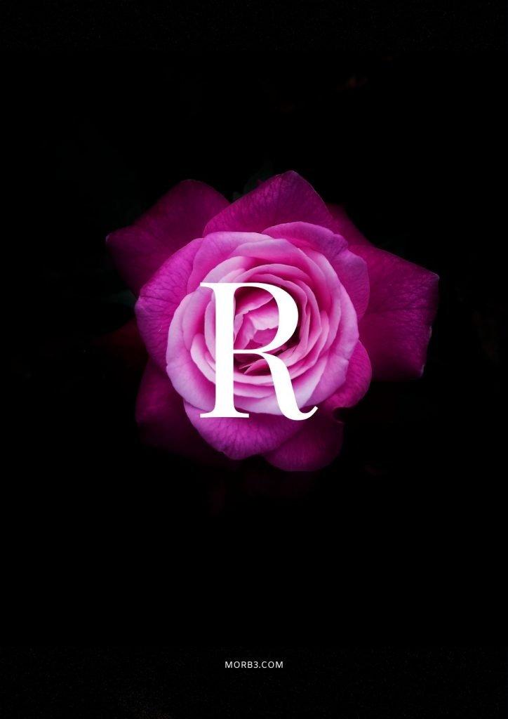 صور حرف R خلفيات حرف R خلفيات حرف R رومانسية اجمل حرف R في العالم حرف R بالورد حرف R احبك حرف R في قلوب حرف R مع كلام حب خلفيات حرف
