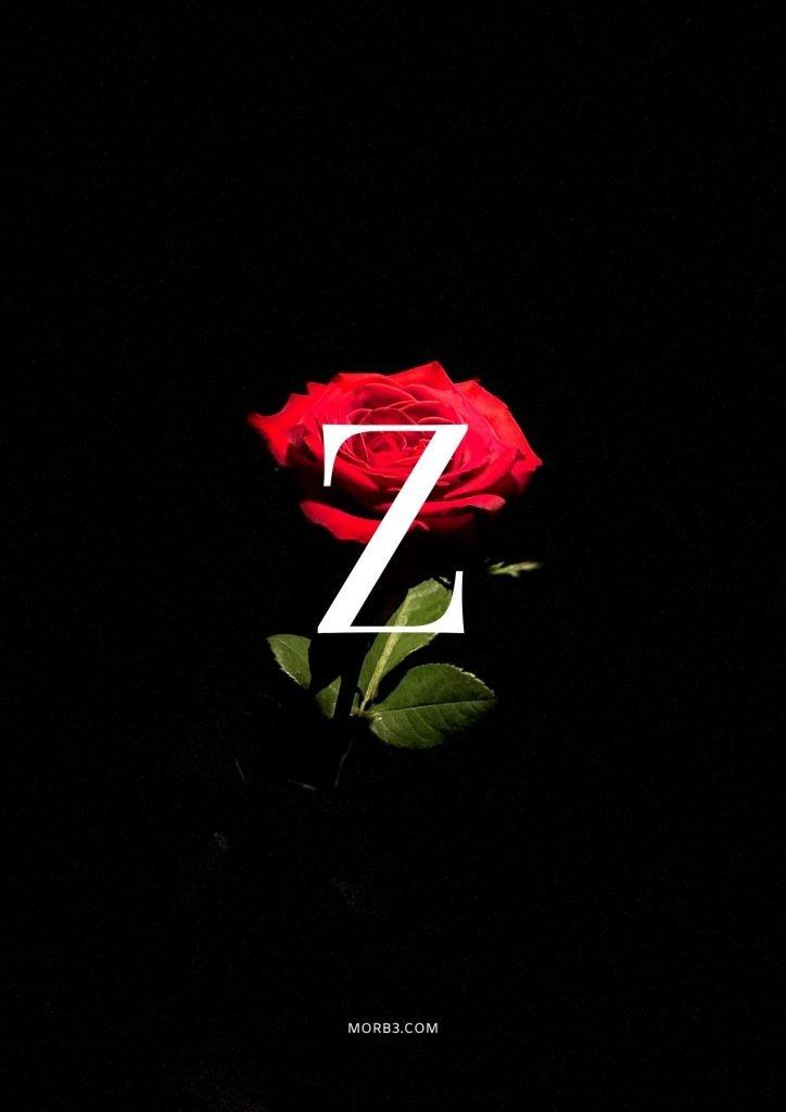 صور حرف Z خلفيات حرف Z خلفيات حرف Z رومانسية اجمل حرف Z في العالم حرف Z بالورد حرف Z احبك حرف Z في قلوب حرف Z مع كلام حب خلفيات حرف Z متحركة خلفيات حرف Z للايفون للموبايل للهاتف للجوال للفيس للواتس صور مكتوب عليها حرف Z صور حرف Z انجليزي خلفيات مكتوب عليها حرف Z رمزيات حرف Z حرفz صور عن حرف z حرف z مزخرف صور حرفz صور z حرف z بالورد حرف z احبك صورحرف z حرف z متحرك حرف z مزخرف كتابه حرف z عاشقانه صور حرف z جميلة خلفيات حرف z جميلة اجمل صور حرف z صور جميلة لحرف z حروف بالانجليزي حروف إنجليزية حروف مزخرفه حروف انجليزي حرف بالانجليزي اجمل الصور عن حرف z حروف مزخرفه حروف انجليزي مزخرفه زخرفة حروف صوري حرف z اجمل الصور حروف اجمل حرف z حرفz مزخرف خلفيات ايفون حرف z z letter z alphabet Z images pictures wallpapers hd for mobile iphone 2020