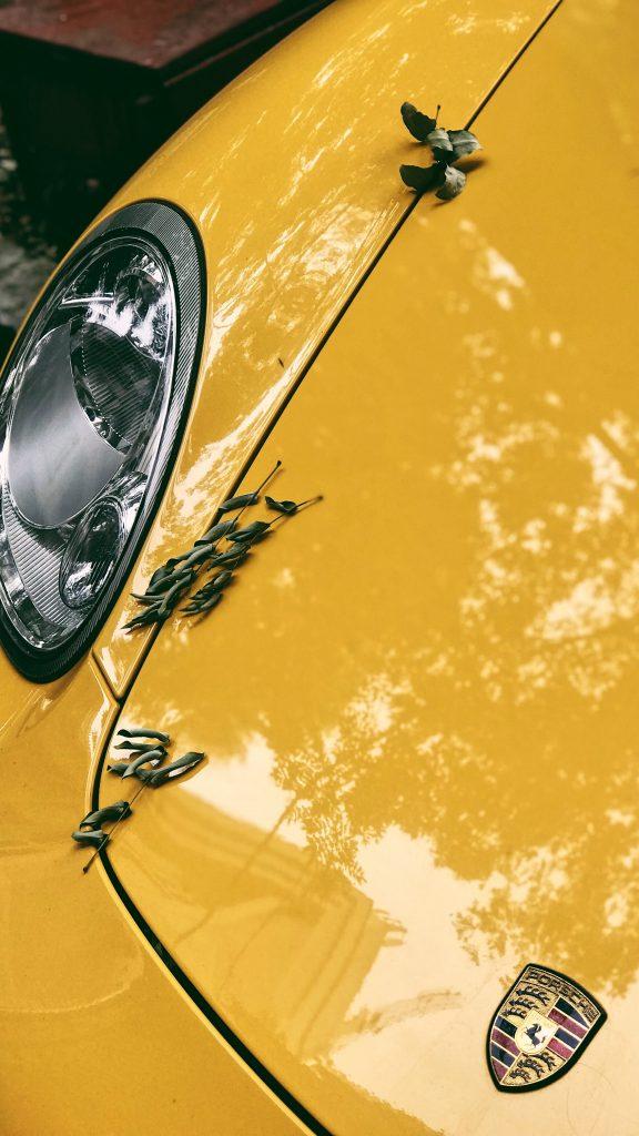 صور سيارات خلفيات سيارات للايفون صور خلفيات سيارات للموبايل خلفيات ايفون سيارات خلفيات سيارات hd خلفيات سيارات مرسيدس للهاتف للجوال خلفيات سيارات سباق خلفيات سيارات للكمبيوتر خلفيات سيارات سوداء خلفيات سيارات bmw خلفيات سيارات 3d خلفيات سيارات 4k خلفيات سيارات 2020 خلفيات سيارات قديمة خلفيات سيارات تفحيط صور خلفيات سيارات قديمه خلفيات سيارات معدلة خلفيات سيارات سعوديه ايفون موبايل اندرويد هاتف جوال خلفيات سيارات فيراري خلفيات سيارات متحركة للموبايل تحميل خلفيات سيارات عالية الجودة خلفيات سيارات رياضية تنزيل خلفيات سيارات خلفيات سيارات متحركه للجوال خلفيات سيارات بي ام دبليو خلفيات سيارات متحركة خلفيات سيارات hd للموبايل خلفيات سيارات لمبرجيني خلفيات سيارات لسطح المكتب hd اجمل خلفيات سيارات عربيات bmw صور سيارات خلفيات ايفون صور سيارات قطب صور سيارات فخمة صور سيارات لكزس صور سيارات مرسيدس صور سيارات قديمة صور سيارات كيا صور سيارات دودج صور سيارات تشحيط صور سيارات تفحيط صور سيارات جيب صور سيارات كامري صور سيارات كرتون صور سيارات صغيرة صور سيارات فورد صور سيارات هونداى صور سيارات حديثه صور سيارات تويوتا صور عربيات سيارات لمبرجيني صور سيارات لمبركيني صور سيارات بورش صور سيارات بوغاتي صور سيارات رنج صور سيارات بي ام دبليو صور سيارات اودي صور سيارات الرنج روفر صور سيارات سعوديه صور سيارات فراري صور سيارات جمس صور سيارات رياضية صور سيارات جاكور صور سيارات هايلكس صور سيارات بي ام صور سيارات bmw صور سيارات شيفروليه صور سيارات رياضيه احلى صور سيارات صور سيارات سوزوكي صور سيارات كامارو احدث صور سيارات دودج تشارجر صور سيارات كيا اوبتيما صور سيارات نقل صور سيارات سبور خلفية سيارة خلفيات شاشة جوال صور سيارات حديثه احدث سيارات مرسيدس عربيات فيراري صور سيارات لامبورجيني صور سيارات hd سيارات خلفيات خلفيه جوال ايفون سيارات صوره سياره مرسيدس رمزيات سيارات صور سيارات جميلة خلفيات سيارات جميله اجمل الصور سيارات مرسيدس صورة علامة مرسيدس سيارات Cars wallpapers for iPhone HD wallpapers of cars HD wallpapers for mobile phone wallpapers with cars cool wallpapers cool cars for wallpapers cars wallpaper iPhone cars HD wallpapers cars wallpapers HD super cars wallpapers sports cars wallpapers 4