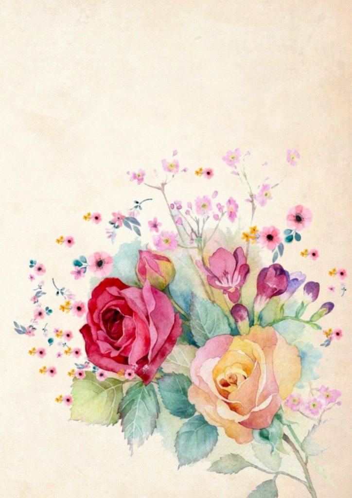 تحميل خلفيات الخلفية مع الورود ورود بيضاء الورود الوردية خلفية زهرة براعم الورد لسطح المكتب مجانا صور لسطح المكتب مجانا