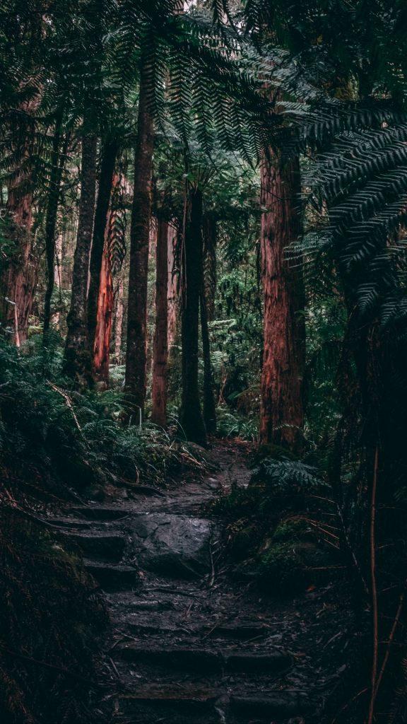 خلفيات ايفون خلفيات مناظر طبيعية صور خلفيات مناظر طبيعية ساحرة روعة جميلة خلابة خلفيات جوال مناظر طبيعية صور مناظر طبيعية خلفيات مناظر طبيعية للايفون خلفيات مناظر طبيعية للجوال خلفيات مناظر طبيعية للهاتف للموبايل للفيسبوك للواتس خلفيات مناظر طبيعية كيوت خلفيات مناظر طبيعية متحركة خلفيات مناظر طبيعية hd خلفيات مناظر طبيعية 4k خلفيات مناظر طبيعية انمي خلفيات مناظر طبيعية كرتون خلفيات مناظر طبيعية للكمبيوتر خلفيات طبيعية خلفيات طبيعية روعة خلفيات طبيعية ساحرة خلفيات طبيعية hd خلفيات طبيعة 4k خلفيات طبيعية ساحرة متحركة خلفيات طبيعية للموبايل خلفيات طبيعية للهاتف خلفيات طبيعية 3d تحميل خلفيات طبيعية للموبايل خلفيات طبيعية hd للموبايل خلفيات طبيعية ساحرة hd صور خلفيات طبيعية خلفيات طبيعية للجوال صور طبيعه مناظر طبيعية صور طبيعة خلفيات طبيعة خلفية طبيعة صور عن الطبيعة مناظر طبيعية جميلة خلفيات مناظر طبيعية عالية الدقة خلفيات طبيعية ساحرة للموبايل خلفيات طبيعية ساحرة hd خلفيات طبيعية HD للموبايل تنزيل خلفيات طبيعية تحميل خلفيات طبيعية للموبايل خلفيات طبيعية جميلة خلفيات طبيعية عالية الجودة خلفيات موبايل طبيعية صورطبيعيه صور مناظر طبيعيه مناظر طبيعية خلابة ساحرة جميلة الخلفيات الطبيعية رمزيات ايفون مناظر طبيعية خلفيات مناظر طبيعية للأيفون و الأندرويد صور و خلفيات مناظر طبيعية خلفيات جوال فخمه خلفيات جوال ايفون خلفيات جوال روعة خلفيات مناظر طبيعية للفيس خلفيات اي فون خلفيات الايفون خلفيه ايفون صور خلفيات مناظر طبيعية خلفيه جوال ايفون خلفيات مناظر طبيعية جميله خلفيات مناظر طبيعية للجوال خلفيات مناظر طبيعية hd للاندرويد خلفيات مناظر طبيعية روعه خلفيات ايفون x خلفيات ايفون xr خلفيات ايفون xs خلفيات ايفون 7 خلفيات ايفون كيوت خلفيات ايفون hd خلفيات ايفون 8 خلفيات ايفون 2020 خلفيات ايفون 11 صور خلفيات ايفون خلفيات ايفون ١١ خلفيات ايفون 6 خلفيات ايفون x s max خلفيات ايفون 11 برو خلفيات ايفون xmax خلفيات ايفون 8 الاصلية خلفيات ايفون روعة خلفيات ايفون 10 اجمل خلفيات ايفون خلفيات ايفون xs الاصليه خلفيات ايفون 6 بلس hd خلفيات ايفون 4k خلفيات ايفون ١١ برو خلفيات ايفون 11 pro max خلفيات ايفون الجديده خلفيات ايفون متحركة خلفيات ايفون 11 الاصلية خلفيات ايفون x الاصليه خلفيات ايفون x الجديد 